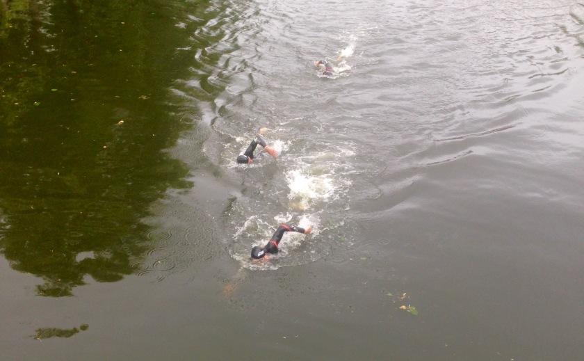 triatlonzwemmen
